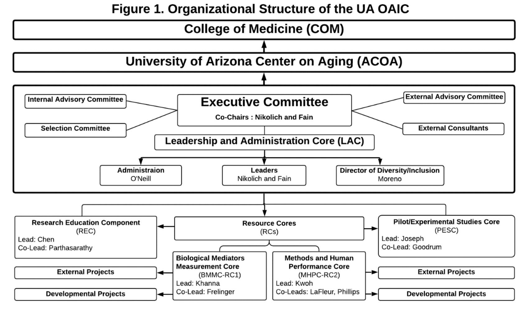 Organizational Structure of UA OAIC