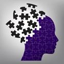 Puzzle head pic